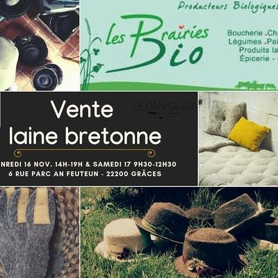 Journée découverte - produits à base de laine de mouton bretonne