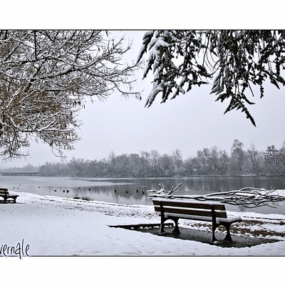 Pause hivernale