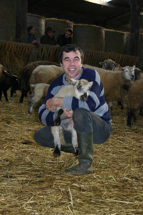 PHILIPPE LE NOHAIC - Eleveur de moutons à LA CHAPELLE NEUVE 0