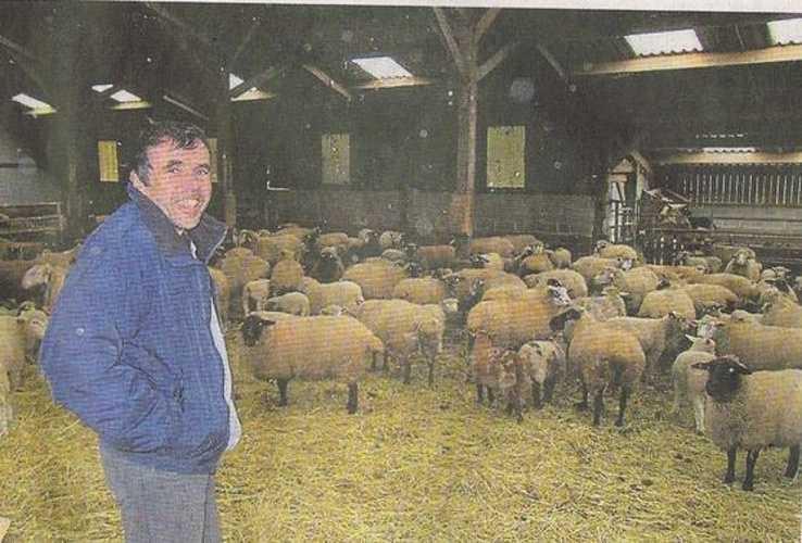 Philippe le Noahaïc: éléveurs d''agneaux 0